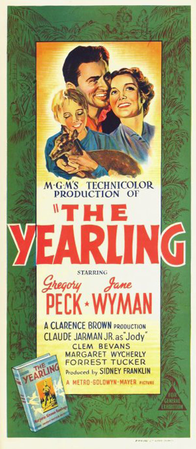 the yearling summary sparknotes