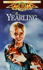 The Yearling #6